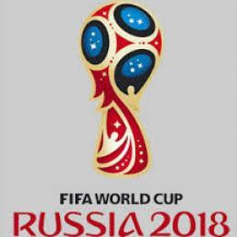 FIFA  Russia's preparations for 2018 World Cup