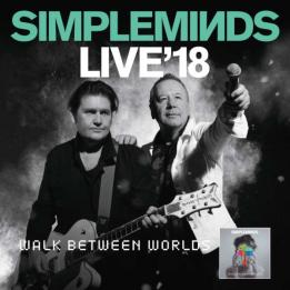 Simple Minds biglietti